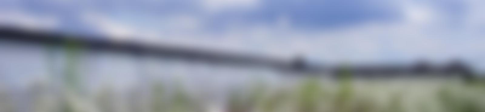 Blurred 13710616 10154377956228781 6583031030332376731 o