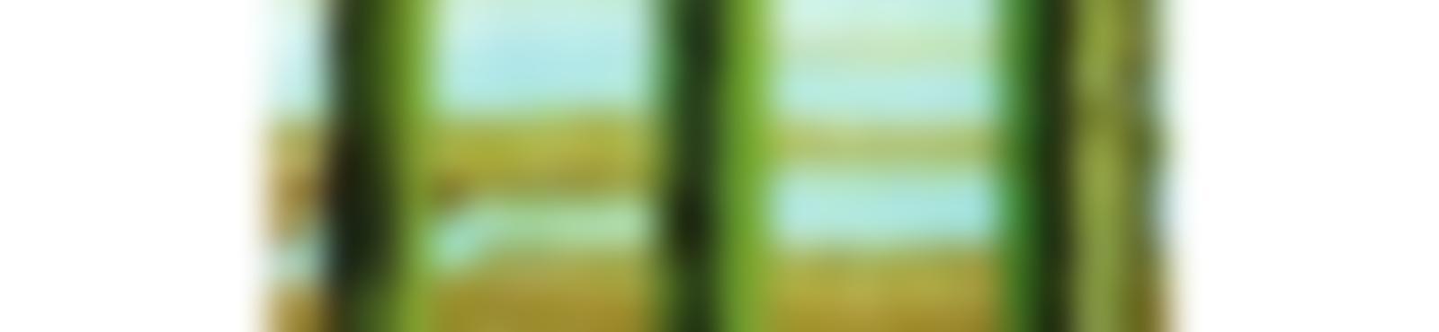 Blurred fenster11 188x300