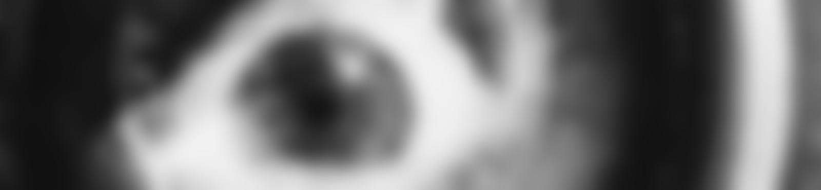 Blurred 0c57633d 8f7c 4ef5 acf7 971b36fb8ea1