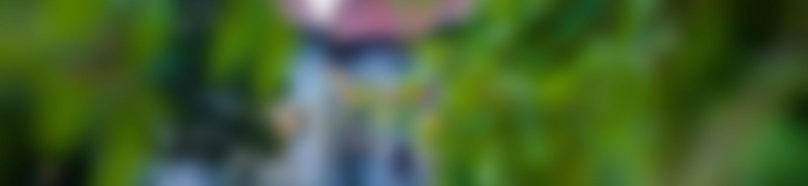 Blurred de4de42c 6b9b 45d4 b2bb c31236da7315
