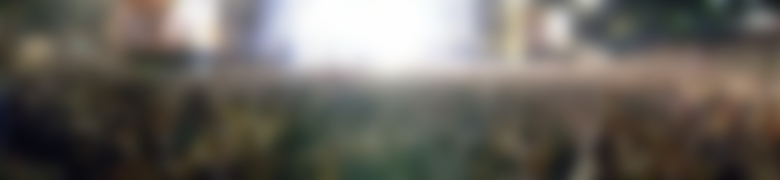 Blurred ifa  1000