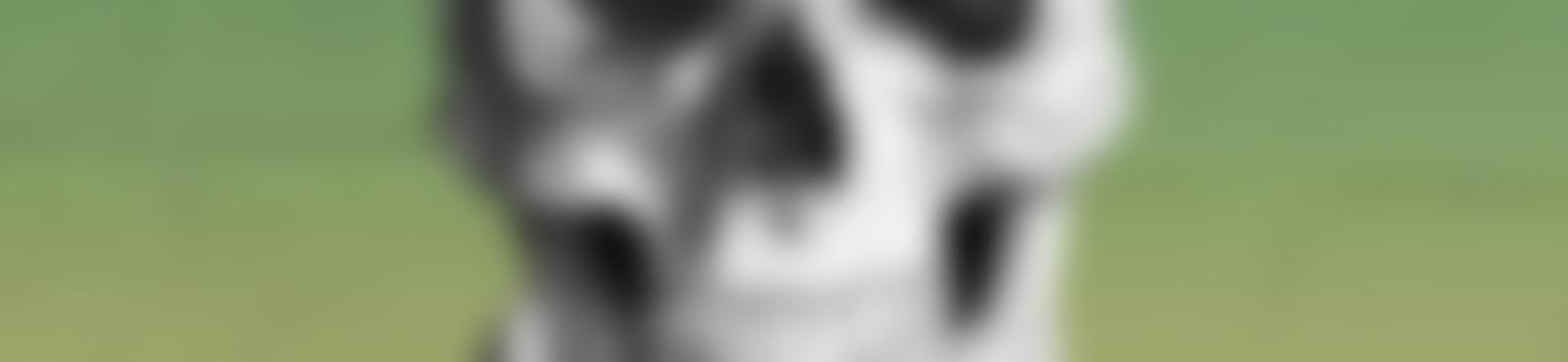 Blurred ddfaea0b 899d 4a03 9f8e a0a7e030dcf9