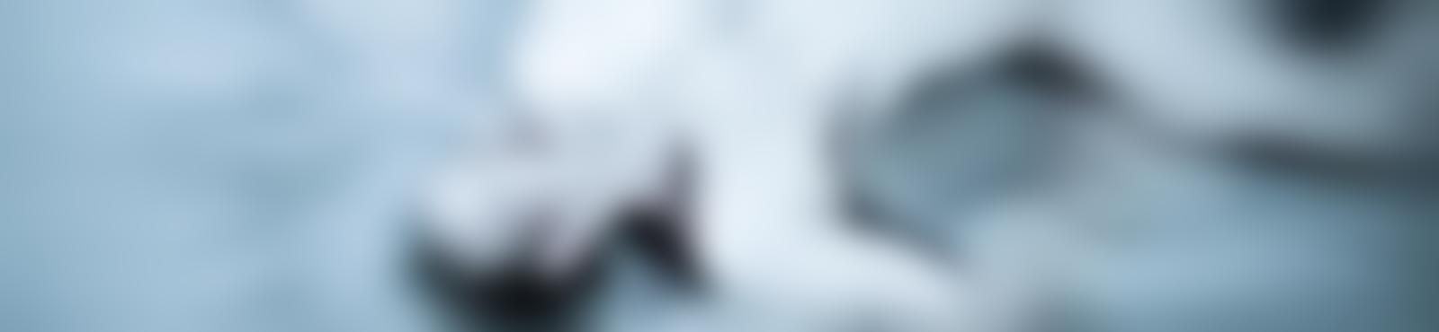 Blurred 8fc5abd8 d6be 4e36 bc11 6ca0ddda3830