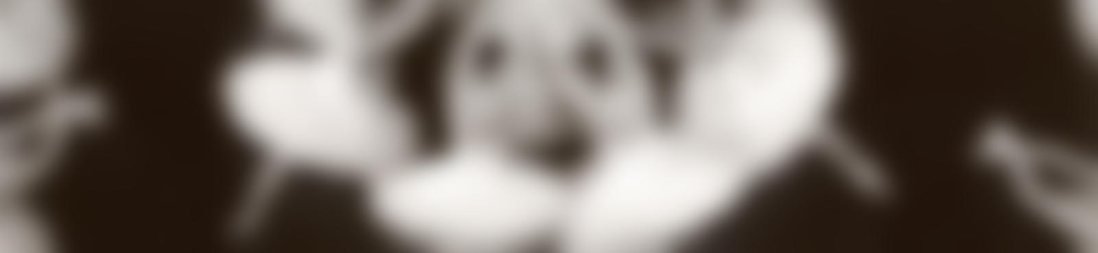Blurred f2f75295 0b23 4a36 b1ab 3f3fb902df14