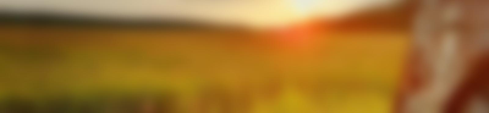 Blurred c97c4045 a984 4f57 95b8 0a1907133cae