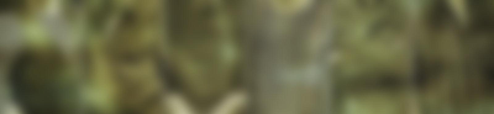 Blurred 8a2404c4 471b 4e5d a9c4 3507893a46eb