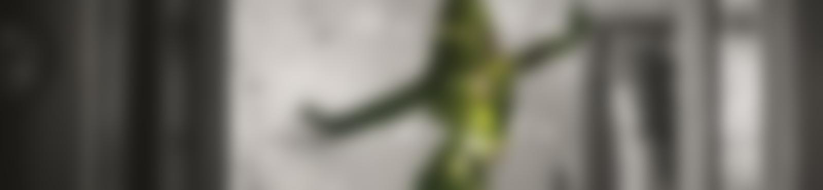 Blurred 535ccf0a 8d45 47fc 949e edeef0619096