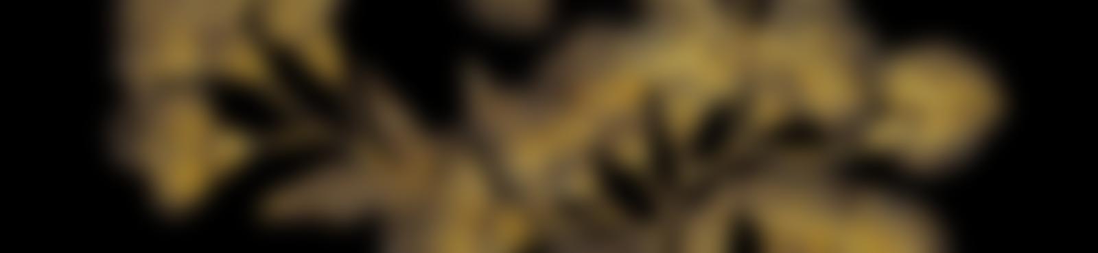 Blurred 811e9a5a 971d 40a4 bbab 6dd5fa372f30