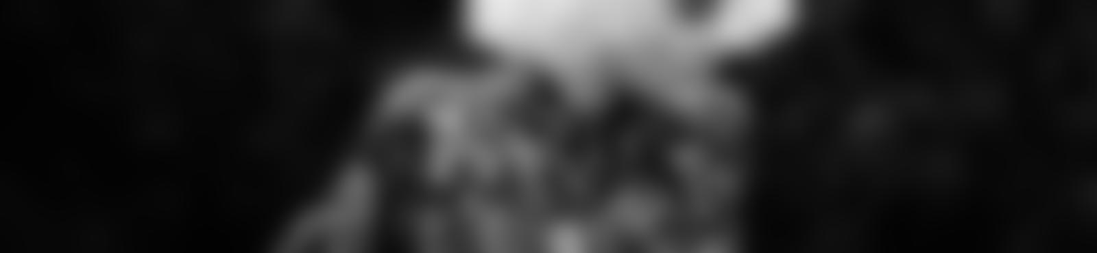Blurred 1b168219 20d9 40f2 b401 7386afd22c6b