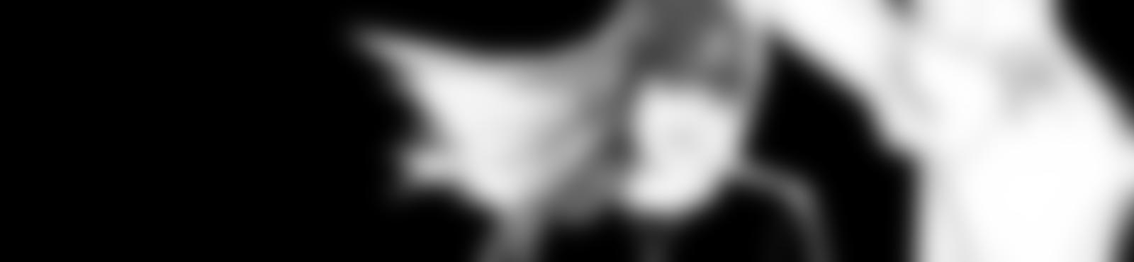 Blurred 0a7e2ea9 8ad8 4691 bcab 7628bcb41b49