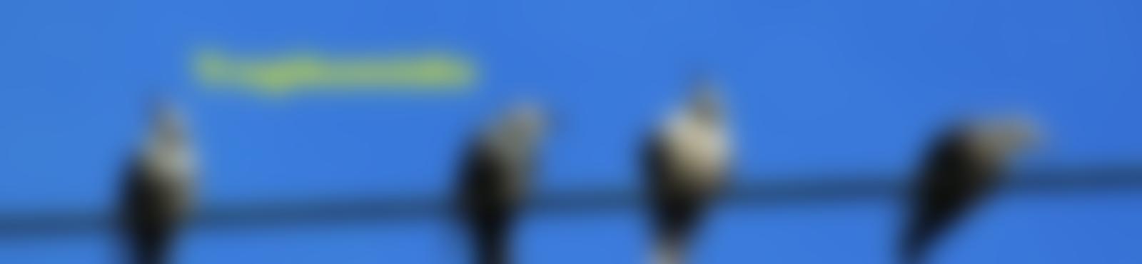 Blurred b86a10e2 fd20 4c39 a356 529d492a8349
