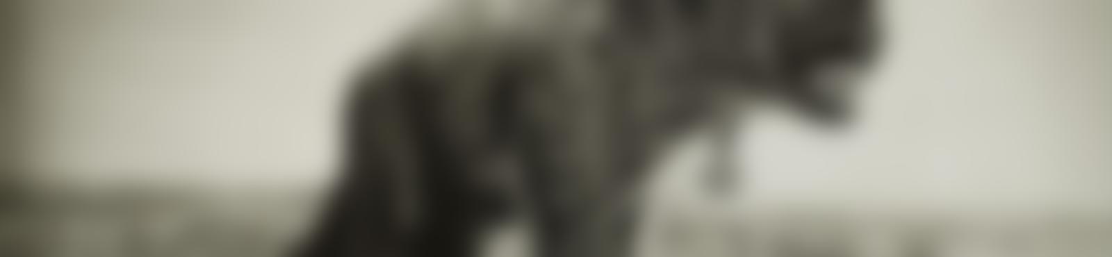 Blurred 2348282f 5068 4a7f 9ca5 a2660aa12230