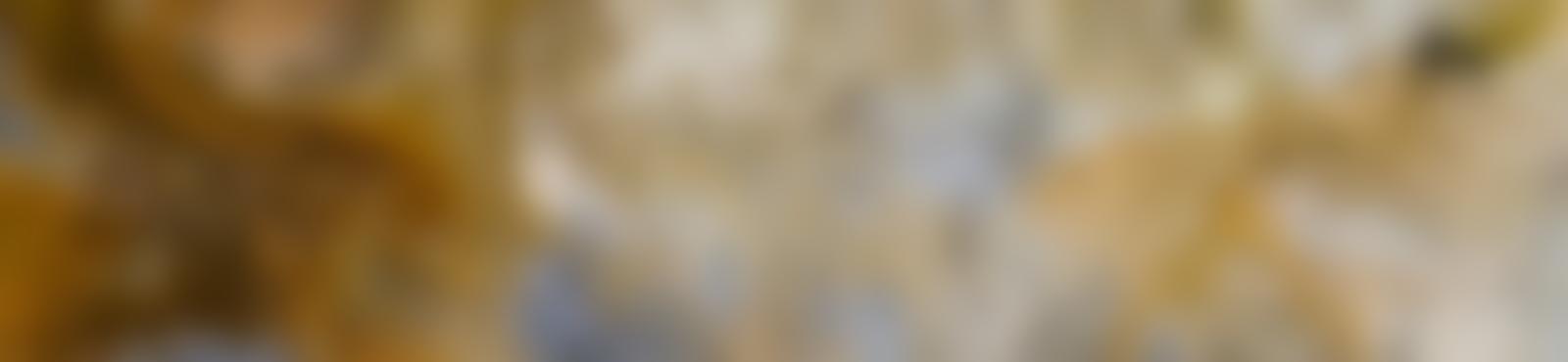 Blurred 13a1fdf6 2e2c 4260 9ce2 d38346a2f723