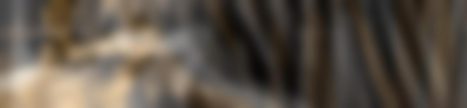 Blurred bacfa394 3a82 4df6 b647 8bde162f6b8b