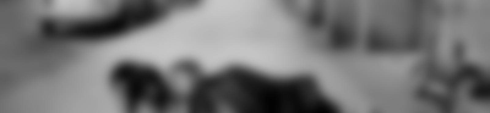 Blurred c35d267a b48e 43f5 875b 733d1582d67d