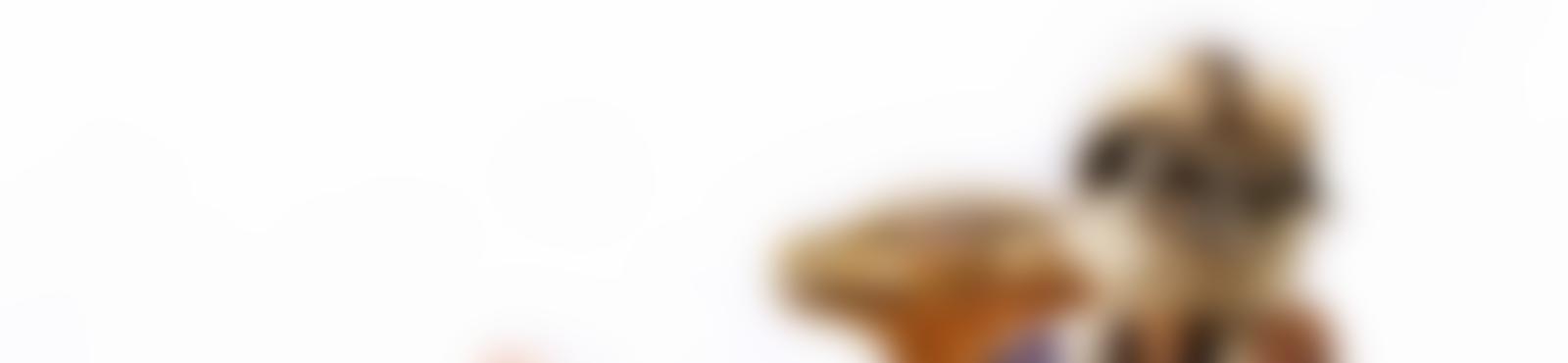 Blurred 9183e56d f31f 4b34 9eed fc1e07cdfa47