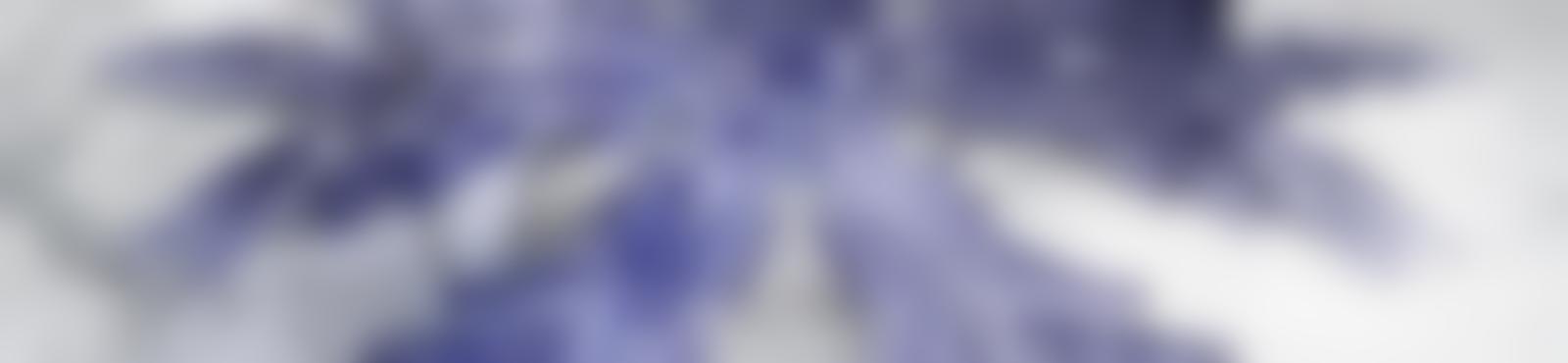 Blurred 68ec65f7 6d72 4a61 a1ad a91f516d59f5