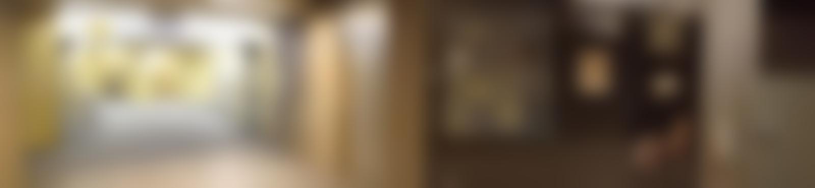 Blurred 848d67bd 79e1 4883 b077 8ec64041e82c